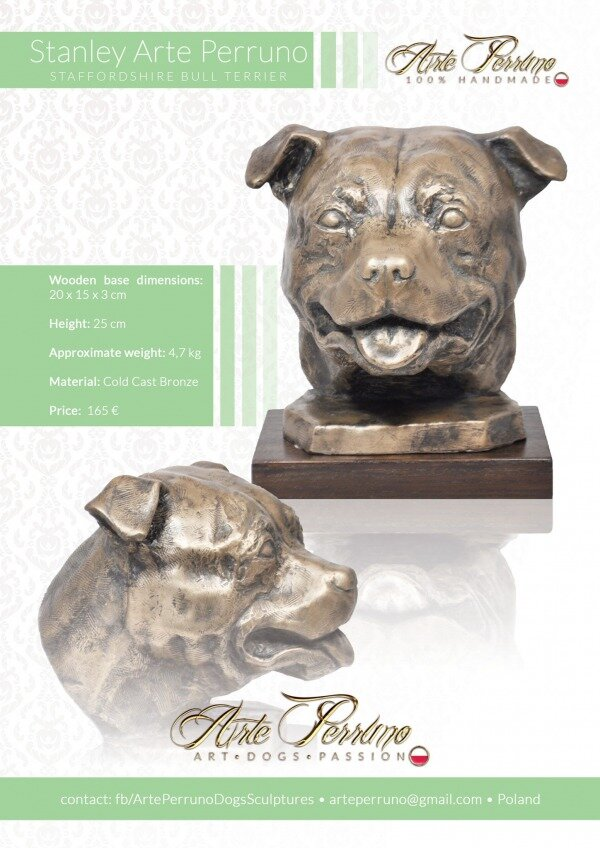 gallery/staffordshire bull terrier_stanley