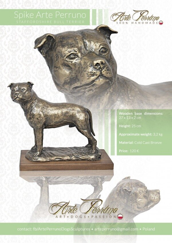 gallery/staffordshire bull terrier_spike